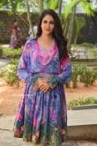 Lavanya Tripathi at Arjun Suravaram Success Meet (6)