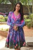 Lavanya Tripathi at Arjun Suravaram Success Meet (8)