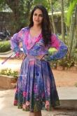 Lavanya Tripathi at Arjun Suravaram Success Meet (9)