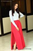 lavanya-tripathi-at-her-birthday-celebration-with-lol-team-38867