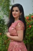 Leema babu at Udhay Movie Audio Launch (18)