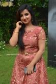 Leema babu at Udhay Movie Audio Launch (19)