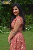 Leema babu at Udhay Movie Audio Launch (22)