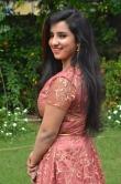 Leema babu at Udhay Movie Audio Launch (23)