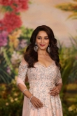 Madhuri Dixit at sonam kapoor wedding reception (1)