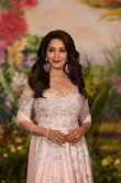 Madhuri Dixit at sonam kapoor wedding reception (4)