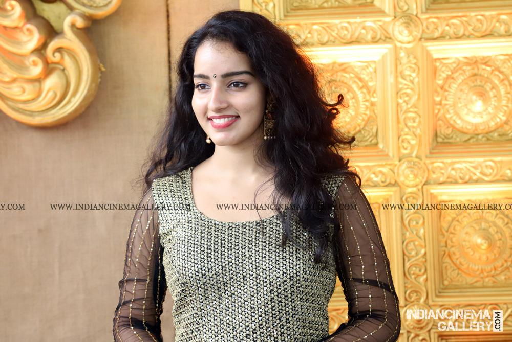 Malavika Menon At Rajith Menon Wedding 17
