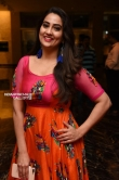 Manjusha at Lakshmis NTR Movie Trailer Launch (18)
