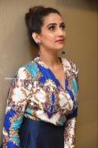 Manjusha at Meeku Maathrame Cheptha Movie Pre Release Event (14)