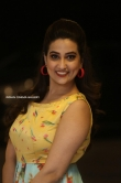 Manjusha at RDX Love Movie Pre Release Event (16)