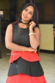 Meghana Chowdary at Hellow Medam movie press meet (10)