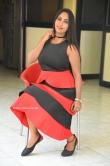 Meghana Chowdary at Hellow Medam movie press meet (13)