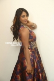 meghna at hbd movie audio launch (21)