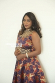 meghna at hbd movie audio launch (24)