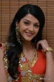 actress-mehreen-photos-stills-152704