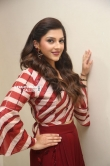 Mehreen Kaur Pirzada photos (22)