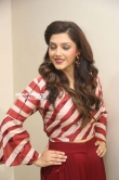 Mehreen Kaur Pirzada photos (25)