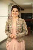 Mehrene Kaur Pirzada at Chanakya movie Trailer launch (16)