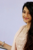 mehrene-kaur-pirzada-at-krishagadi-veera-prema-gadha-thanks-meet-186697
