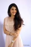 mehrene-kaur-pirzada-at-krishagadi-veera-prema-gadha-thanks-meet-49095