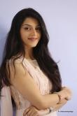 mehrene-kaur-pirzada-at-krishagadi-veera-prema-gadha-thanks-meet-6310