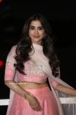 Nabha Natesh at Disco Raja Movie Audio Launch (19)