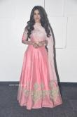 Nabha Natesh at Disco Raja Movie Audio Launch (8)