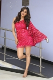 Nabha Natesh at Disco Raja Movie Press Meet (13)