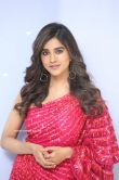 Nabha Natesh at Disco Raja Movie Press Meet (8)