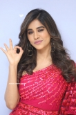 Nabha Natesh at Disco Raja Movie Press Meet (9)