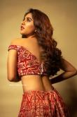 Nabha Natesh latest photos 06.03.20 (2)