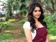 Nabha Natesh stills december 2018 (1)