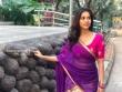 Nabha natesh in saree stills (1)