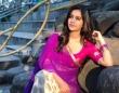 Nabha natesh in saree stills (2)