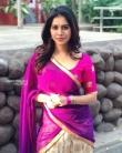 Nabha natesh in saree stills (3)