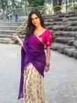 Nabha natesh in saree stills (5)