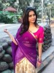 Nabha natesh in saree stills (6)
