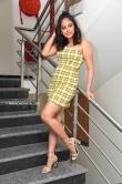 nandita swetha at 7 movie press meet (18)