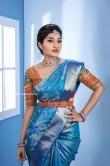 Neelima Rani in blue saree (3)