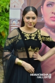 Nikesha Patel at Pandimuni Movie press meet (8)