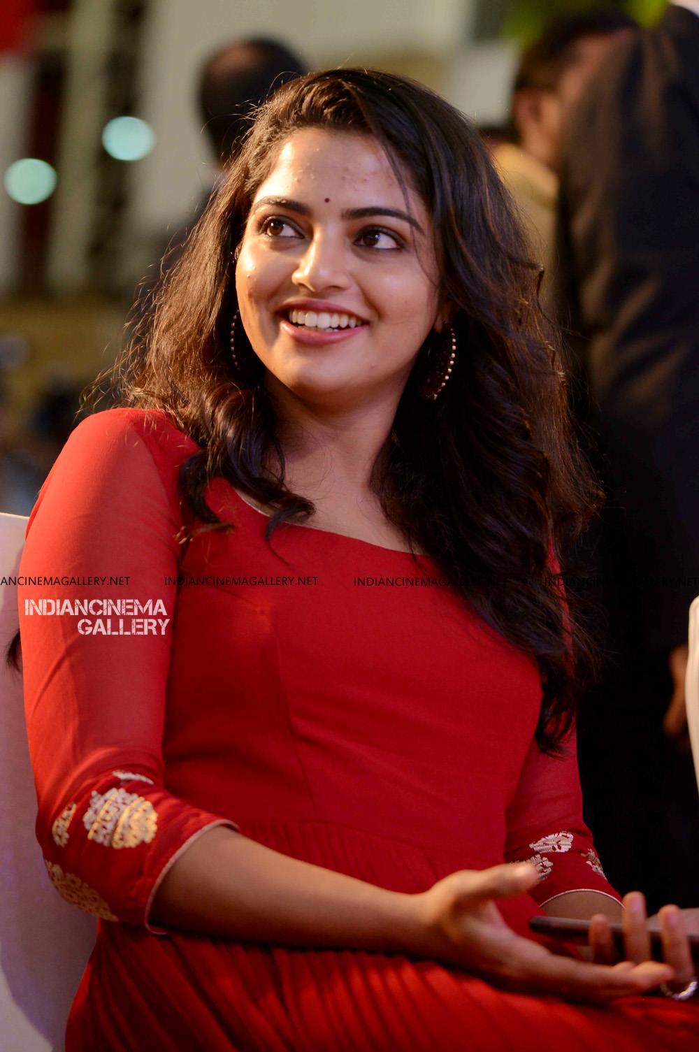 Nikhila Vimal at Mera Naam Shaji Audio Launch (5)