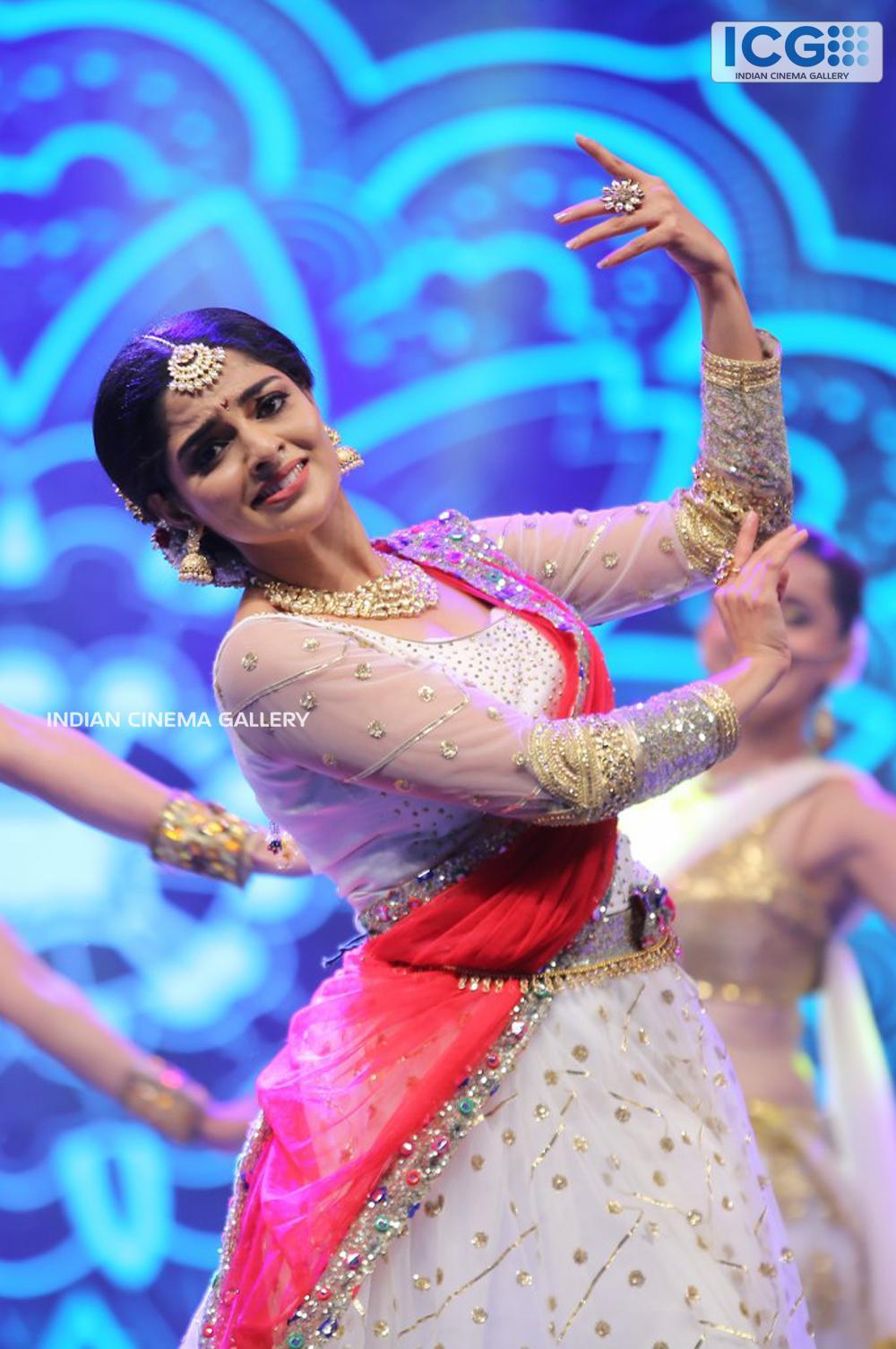 Nikhila Vimal at siima awards (2)