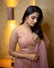 Nikhila Vimal Instagram Photos (3)