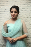 Nikhila Vimal at Donga Movie Pre Release Event (13)