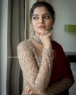 Nikhila Vimal instagram Photos (7)