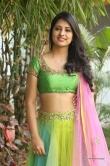 south-indian-actress-nikitha-bisht-173543