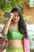south-indian-actress-nikitha-bisht-205812