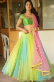 south-indian-actress-nikitha-bisht-31957
