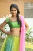 south-indian-actress-nikitha-bisht-348445