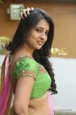south-indian-actress-nikitha-bisht-456223